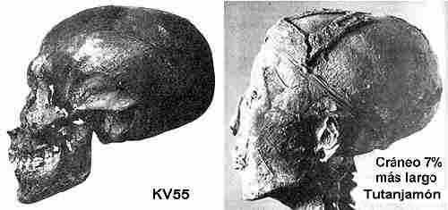 KV55-craneo-tut