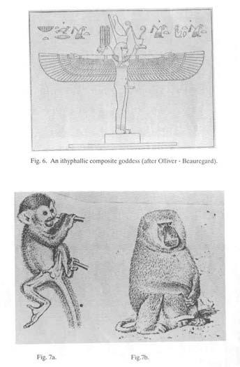 (a) Diosa compuesta itifalica: viñeta del Libro de los Muertos, Dicho 164. Segun Ollivier-Beauregard. (b) Presentacion falica de un primate macho. Segun I. Eibl-Eibesfledt. (c) Babuino exhibiendo los genitales en actitud de