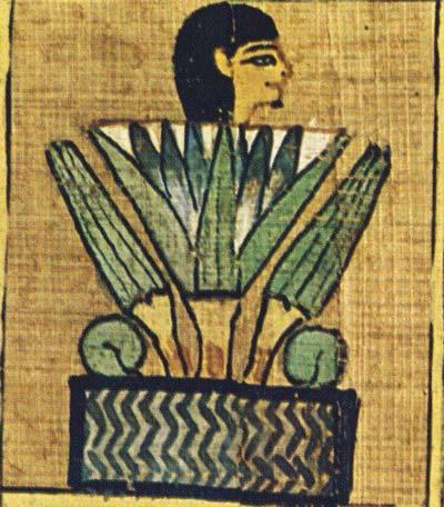 Fig. 6. Difunto metamorfoseado en loto. Capítulo 81 del Libro de los Muertos. Foto en E. ROSSITER, Le Livre des Morts. Papyrus d'Ani, Hunefer, Anhaï, Londres, 1984, p. 60
