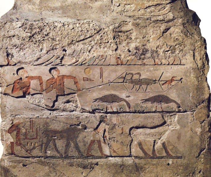 Fig. 5.- Fragmento mural de la mastaba de Nefermaat cuyo registro central muestra dos ánades picoteando el suelo entre diversas plantitas y una e la caza de aves con red. En el registro inferior se conserva una representación de carácter agrícola. Foto en Tesoros Egipcios de la colección del Museo Egipcio de El Cairo, Barcelona, 2000, p. 60