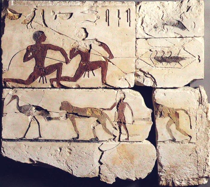 Fig. 6.- Fragmento mural de la capilla de Atet conservado en la gliptoteca Ny Carlsberg (Copenhague), en la que aparece una escena de caza de aves con red y otro registro que muestra un par de monos, uno de ellos atrapando la cola de una barza, y un niño entre los animales. Foto en Catálogo de la exposición L'art égyptien au temps des pyramides, París, 1999, p. 169