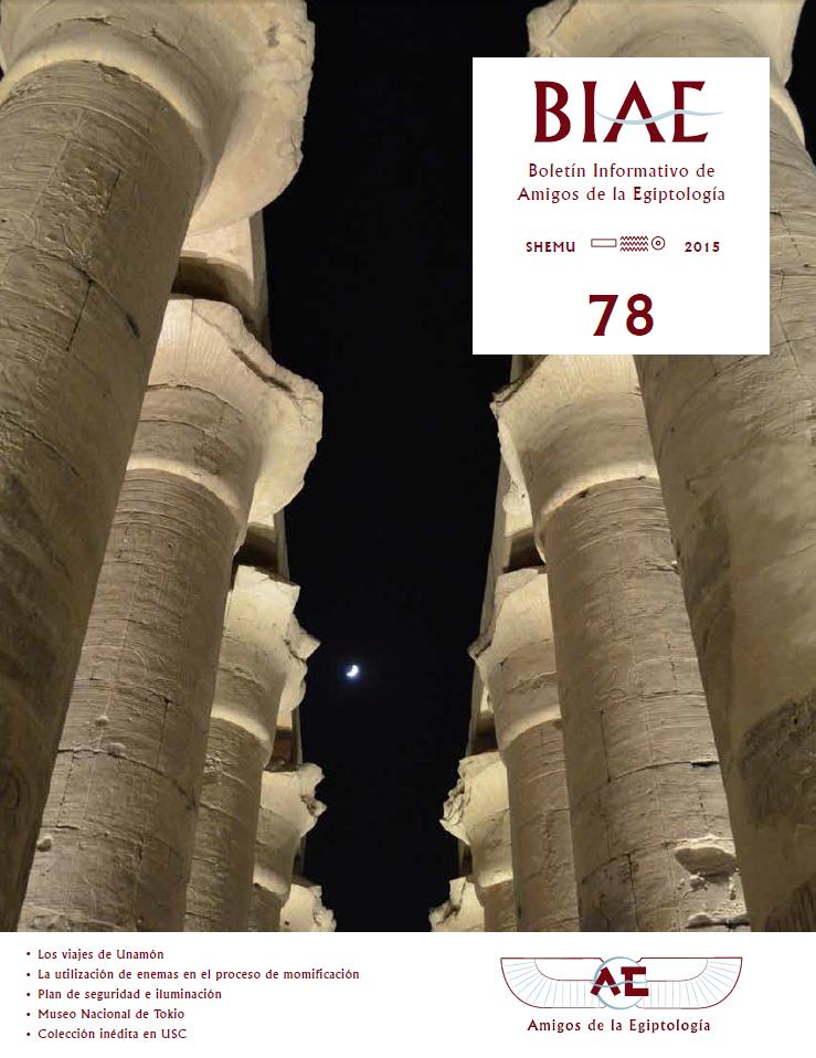 BIAE78 portada