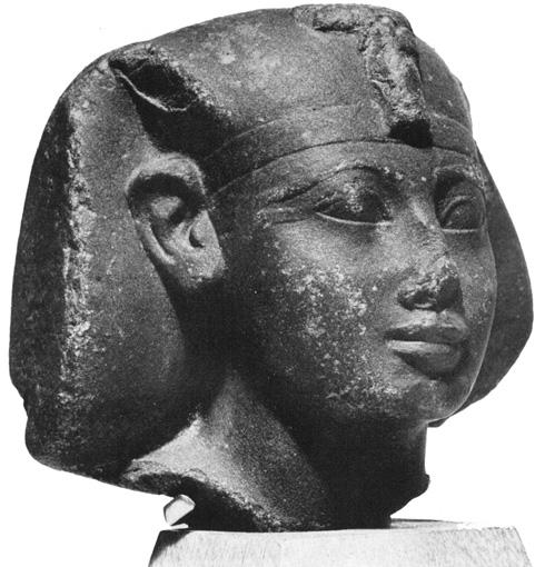 5.- head amenhotep
