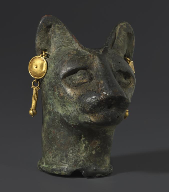 gato-oro-smithsonian