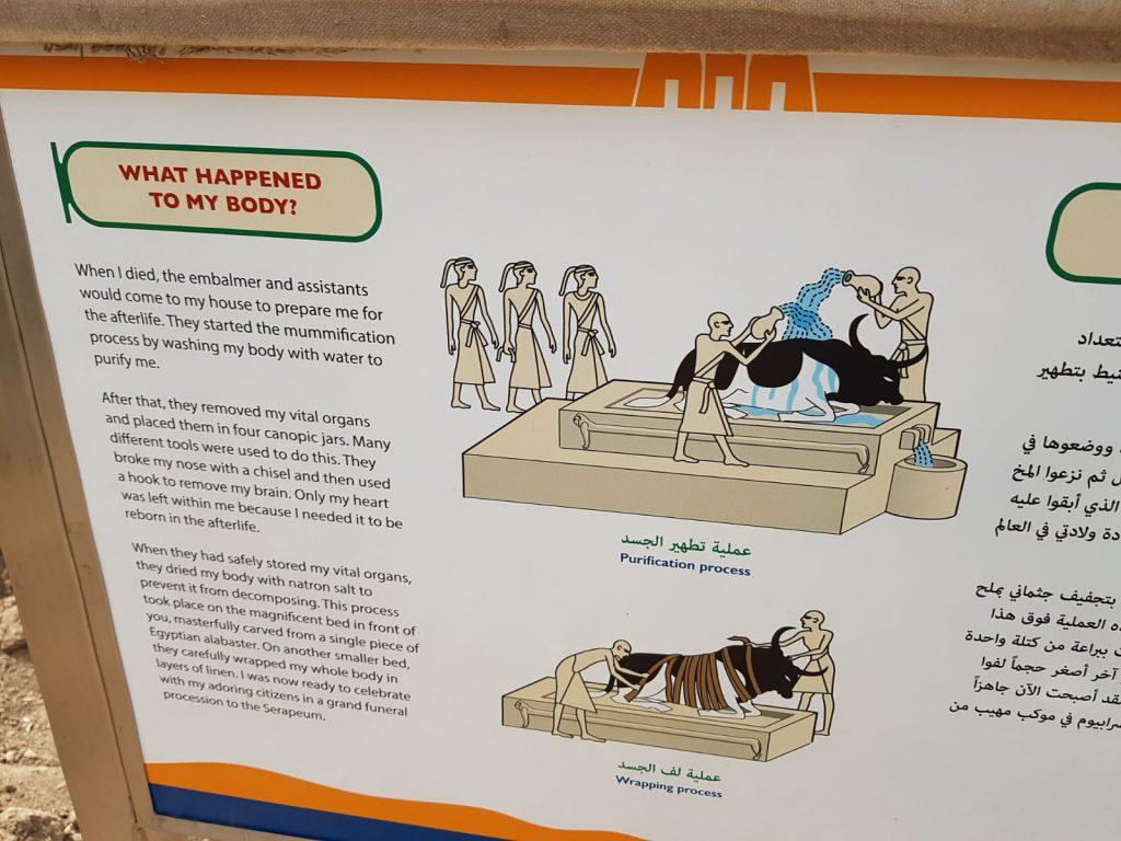 Paneles explicativos en el templo de Apis en Menfis